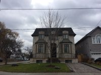 [Photo of a small maple tree infront of a detatched Toronto home. The tree is directly in front of the doorway, and about three metres from the driveway, with almost twenty metres of open grass on the other side.]
