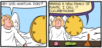 "[The first two panels from the Saturday Morning Breakfast Cereal comic ""Cucurbits"". In panel 1, an angel approaches God and asks, ""Hey God, whatcha doin'?"" In panel two, God shows a work bench with a melon, a gourd, and a squash, and replies: ""Making a new family of plants. I call it ""cucurbitaceae"".]"